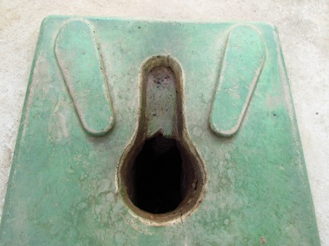 My pit latrine. Notice how the front part is cemented.