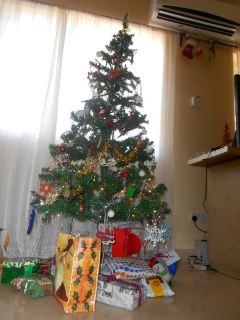 122514_A Peace Corps Christmas (8)