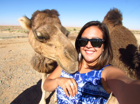 This camel sir is clearly a wild one. Gettin' a bit frisky!